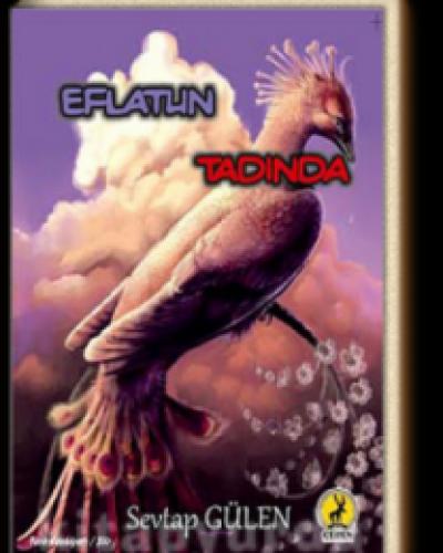 Sevtap Gülen – Eflatun Tadında – Kitap Roman Özeti Yorumlar