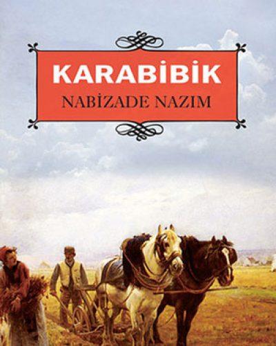 Karabibik Kitap Özeti – Nabizade Nazım